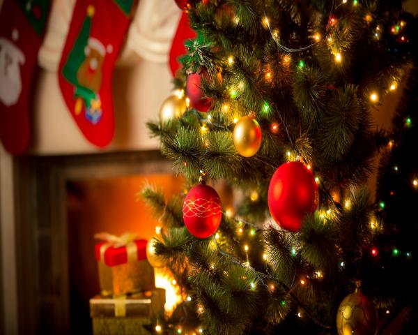 self catering accommodation christmas. christmas holiday accommodation, somerset christmas holiday, devon christmas holiday,