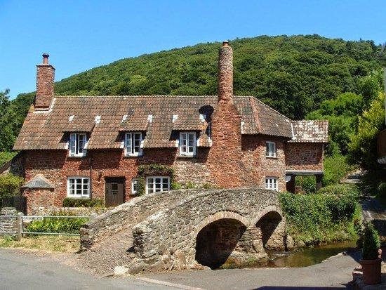 Allerford holiday cottages, kate and toms exmoor, Self Catering Holiday Cottages, anniversary accommodation exmoor, dog friendly sleeps 12, corporate gathering accommodation,