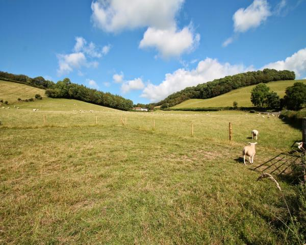 Dulverton holiday cottages, holiday cottages Dulverton, Self Catering Holiday Cottages, Dulverton holiday homes for rent, dog friendly cottages Dulverton, Holiday Cottages to Rent In Dulverton