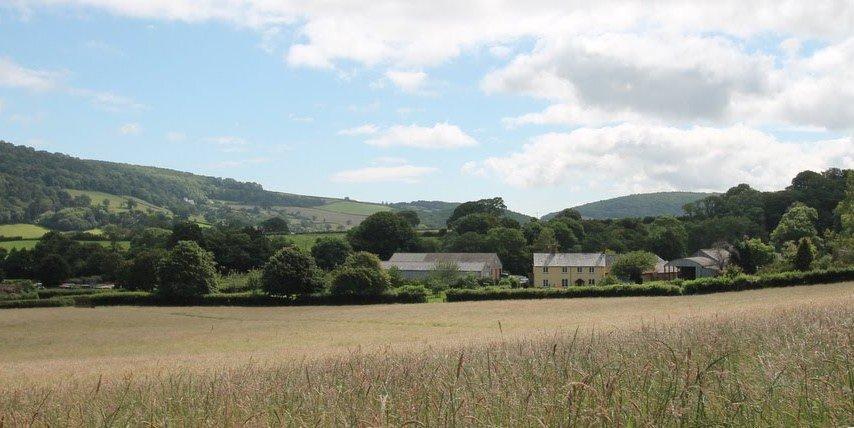 Looking towards Farm Cottage across the field