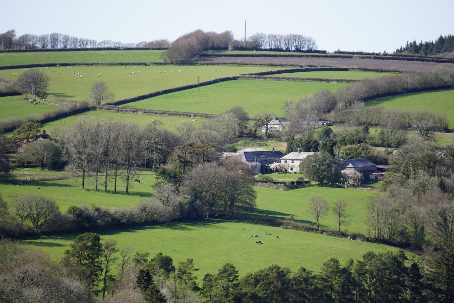Little Bray House from across the valley