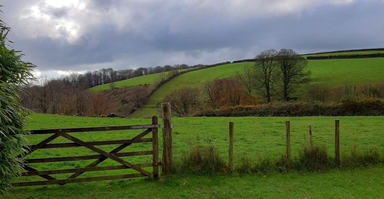 Brook Cottage garden gate