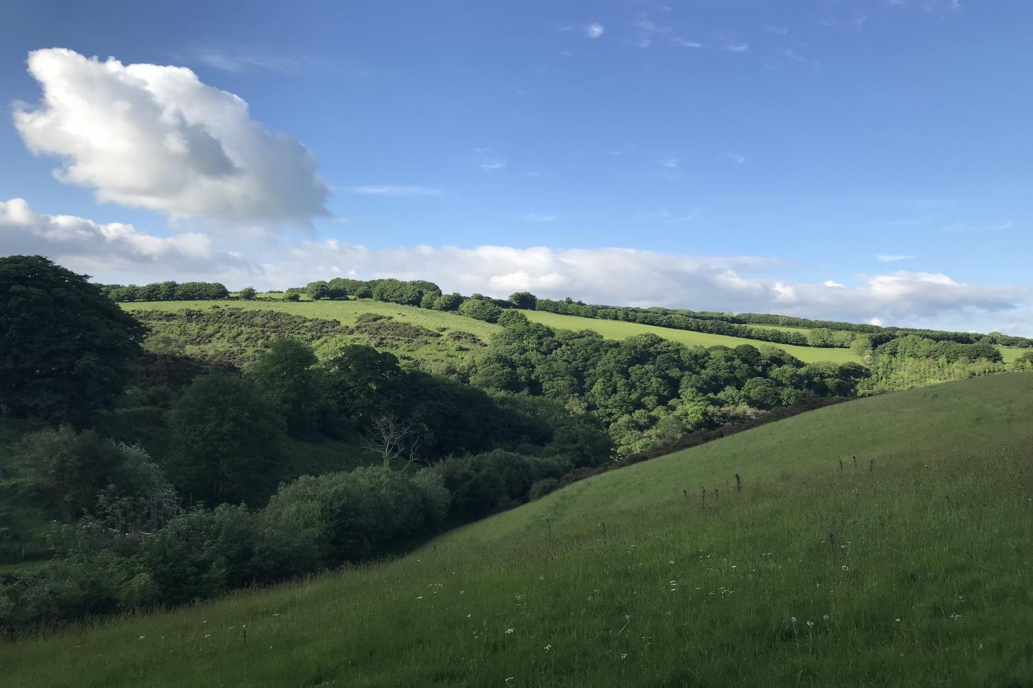 The Cowshed surrounding area of natural beauty