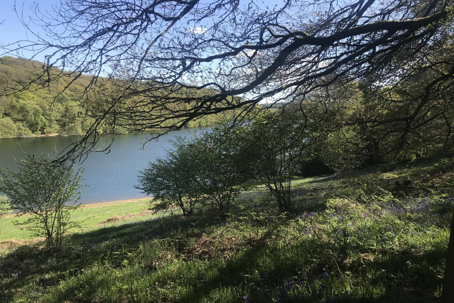 Accommodation near Clatworthy Reservoir for walks and fishing