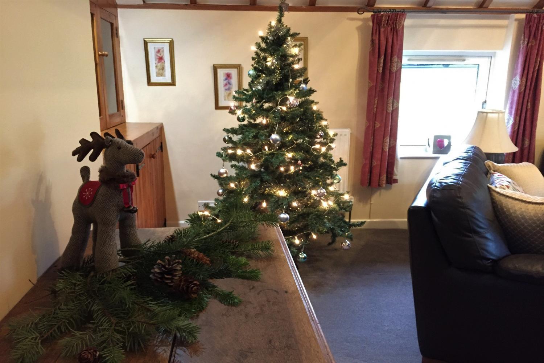 Christmas - Christmas tree in living room